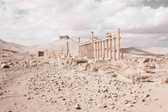 The Camp of Diocletian. Palmyra, Syria
